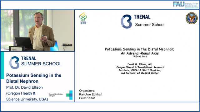 TRENAL Summer School - Potassium sensing in the distal nephron preview image