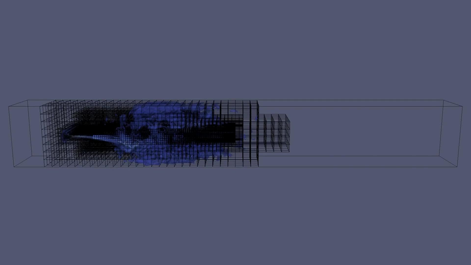 Lattice Boltzmann & Grid Refinement: A Study of the Vocal Fold preview image