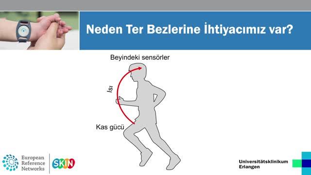 Ektodermale Dysplasie Türkisch preview image